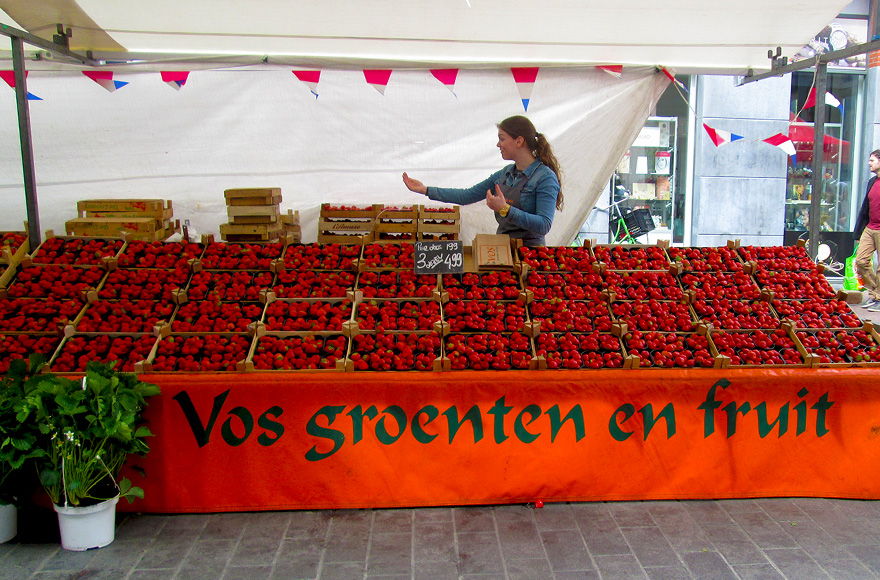 dordrecht market